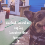 Irresistible Links {Global Pet Expo + More!}