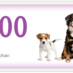 dog_food_coupon
