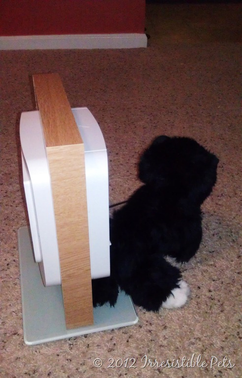 Review Sure Flap Microchip Pet Door Irresistible Pets