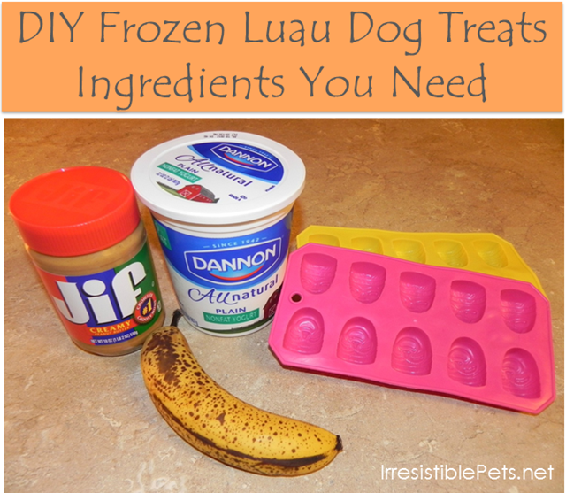 DIY Frozen Luau Dog Treats Ingredients