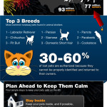 Happy 4th of July – Keep Your Pets Safe!
