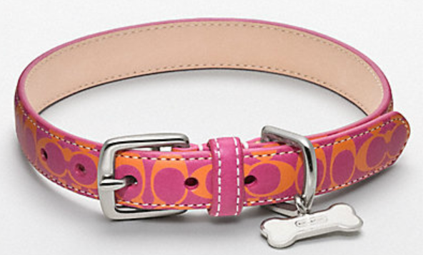 Coach Dog Collars Discontinued
