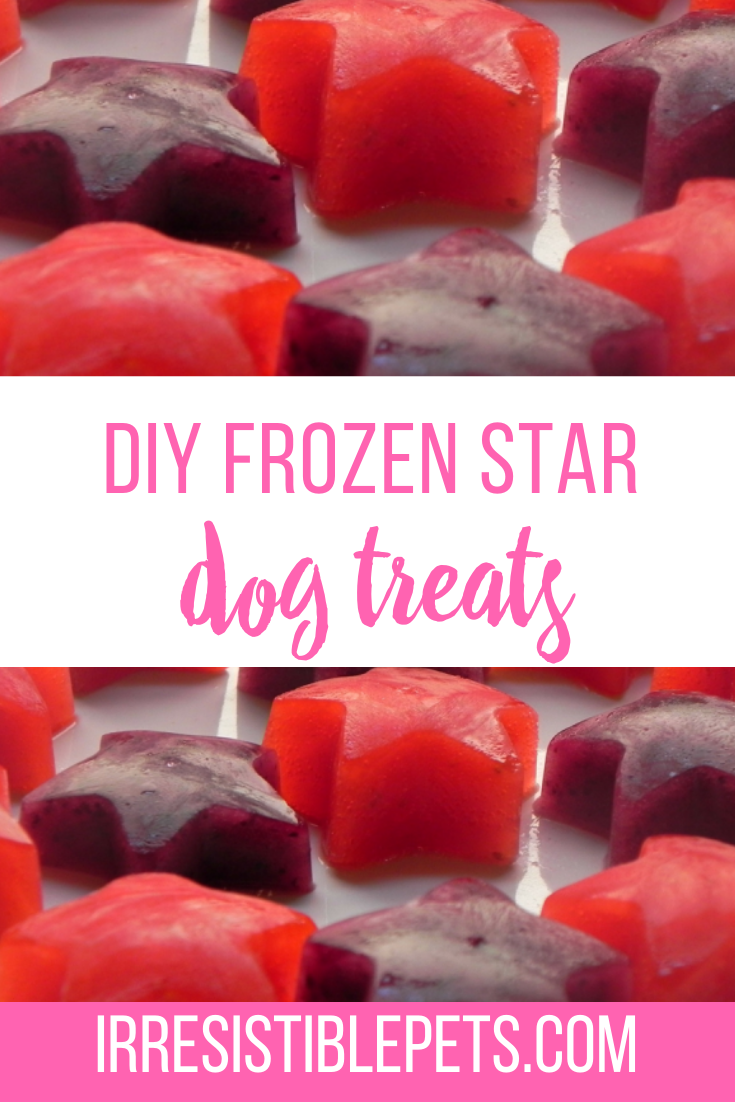 DIY Frozen Star Dog Treat Recipe