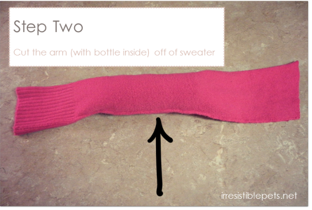 DIY Water Bottle Crinkle Dog Toy - Step Two