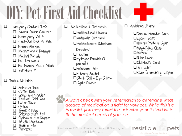 Giveaway: DIY Pet First Aid Kit From Q-tips & Irresistible ...