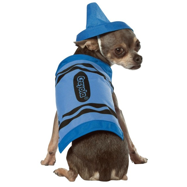 Back to School Pets - Crayola Pet Costume