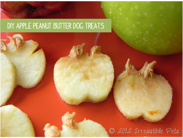 DIY Apple Peanut Butter Dog Treats Tutorial