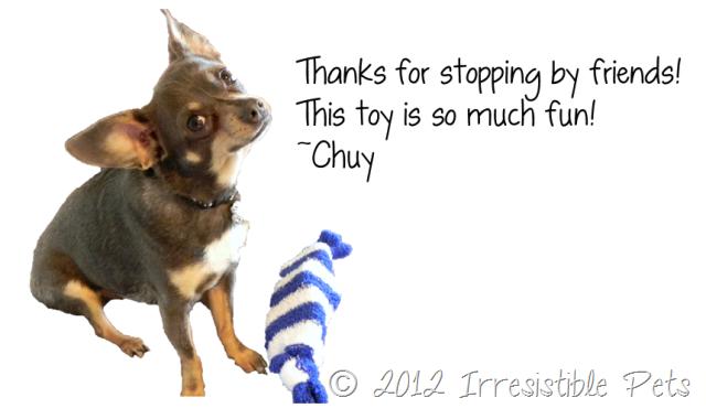 DIY Pirate Sock Toy - Chuy