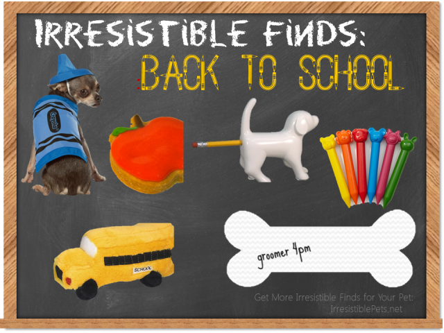 Irresistible Finds - Back to School Pets