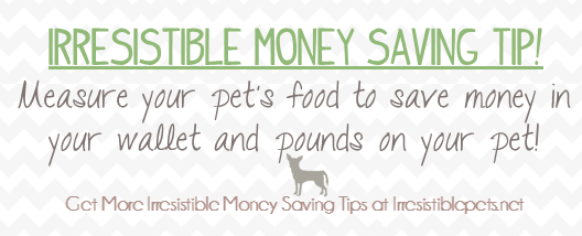 money saving pet tips