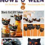 Howl-O-Ween {Black Cat Ideas}