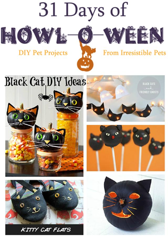 31-Days-of-Howloween-Black-Cat-DIY-Ideas