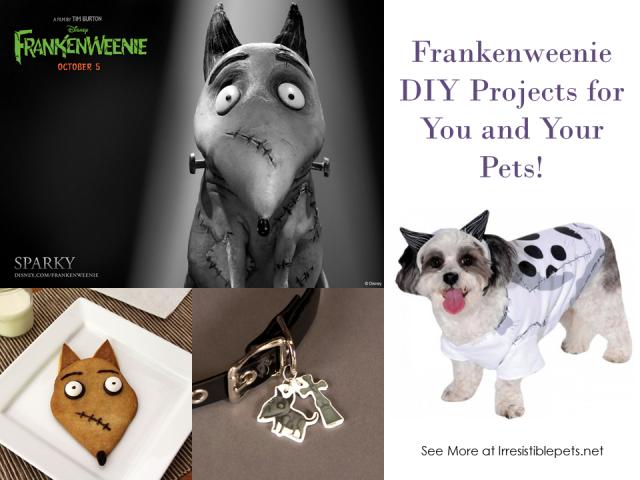 31-Days-of-Howloween-Frankenweenie