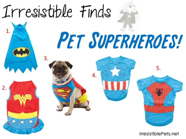 31 Days of Howloween - Pet Superhero Costumes