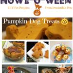 Howl-O-Ween {Pumpkin Dog Treat Recipe Roundup}
