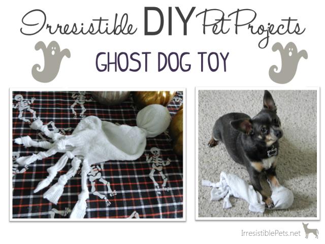 DIY Ghost Dog Toy
