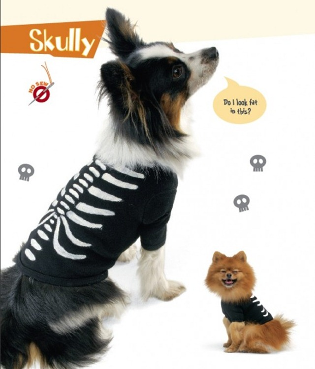 DIY Pet Halloween Costumes - Skully Pet Costume