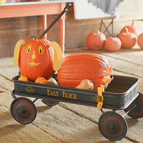 DIY Pet Pumpkin Carving Ideas - Halloween Hound