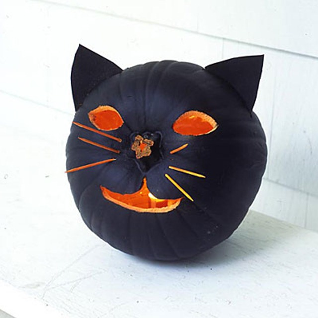 Howloween - Black Cat Pumpkin