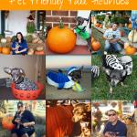 Howl-O-Ween {Pet Friendly Fall Activities}