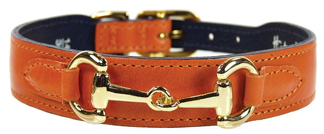 Trip to the Pumpkin Patch - Tangerine Luxe Collar