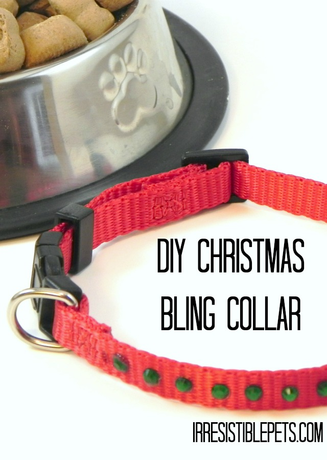 DIY Christmas Bling Collar by IrresistiblePets.com