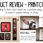 Review–Printcopia Canvas Prints