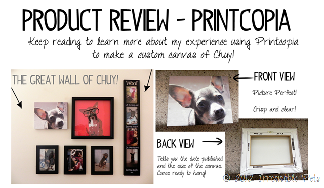 Printcopia Product Review via IrresistiblePets.net