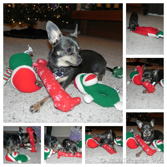 Chuy Christmas Collage