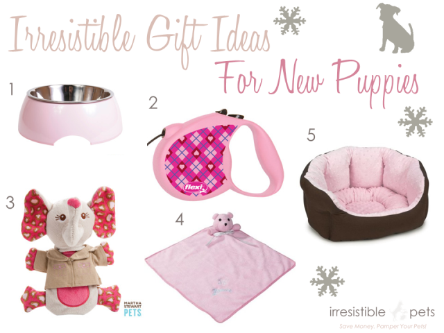 Irresistible Pets Gift Ideas - New Girl Puppies