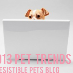 2013 Pet Trends from Irresistible Pets Blog
