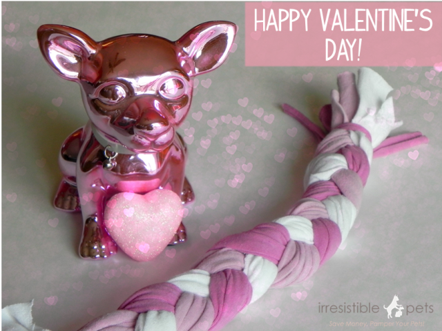 Happy Valentines Day DIY Dog Toy from IrresistiblePets.net