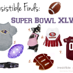 Irresistible Finds {Super Bowl XLVII Pet Gear}