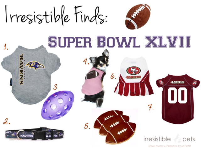 Irresistible Finds - Super Bowl XLVII Pet Gear