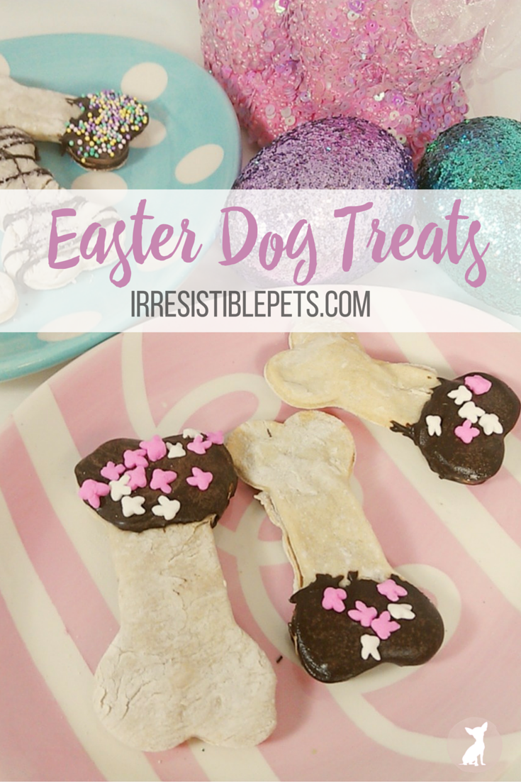 DIY Easter Dog Treats by IrresistiblePets.com