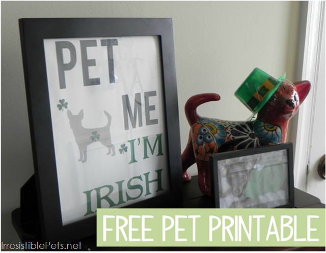 Free Pet Printable from IrresistiblePets.net