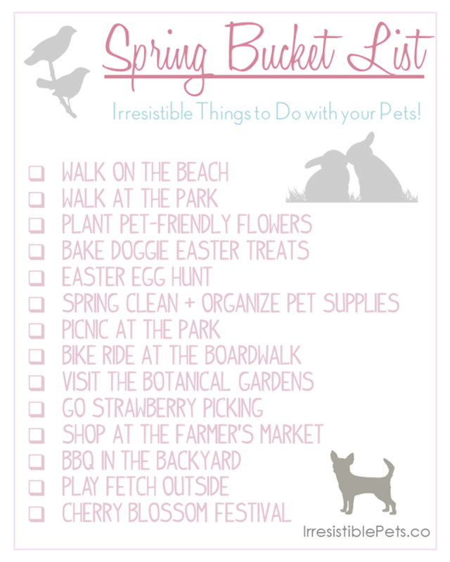 Spring Bucket List for Pets from IrresistiblePets.co