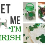 St Patrick Day Pet DIY Roundup!