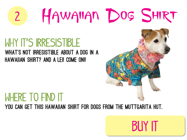 2 - Hawaiian Dog Shirt