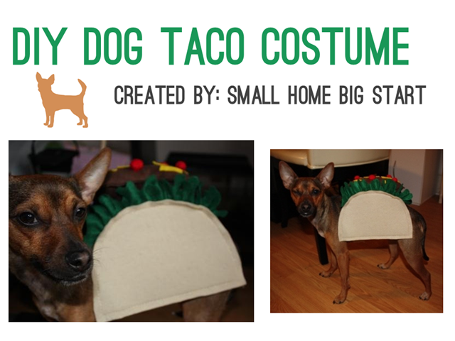 Cinco de Mayo - DIY Taco Costume