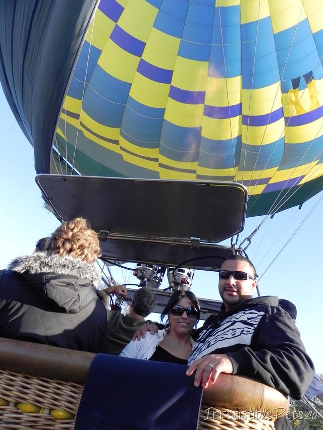 Hot Air Balloon Delmar