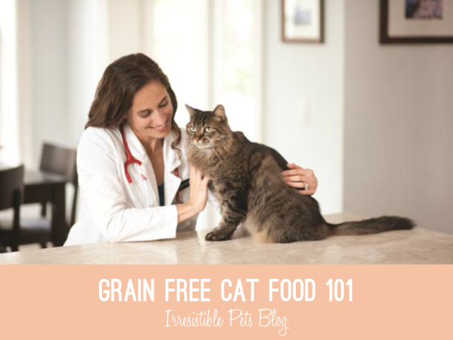 Grain Free Cat Food via Irresistible Pets