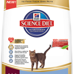 Grain Free Cat Food 101 {Plus Giveaway!}