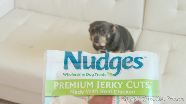Nudges Safe Chicken Jerky for Dogs