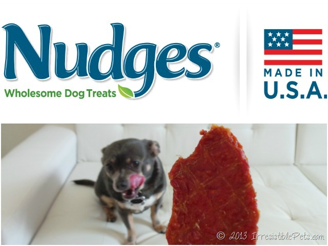 Nudges Wholesome Dog Treats Review by IrresistiblePets.com