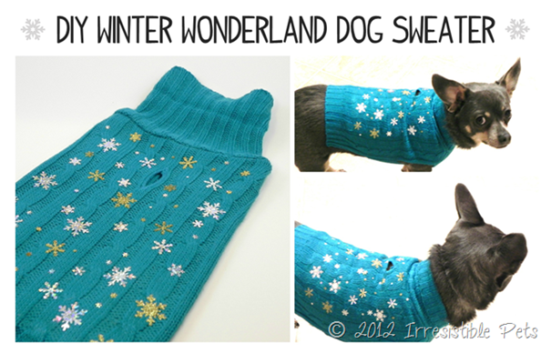 diy dog-sweater