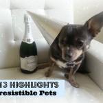 Irresistible Pets 2013 Highlights