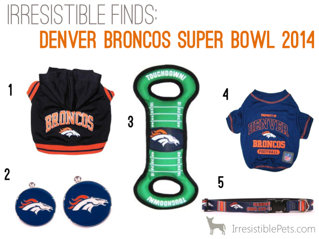 Irresistible Finds - Denver Broncos Super Bowl Dog Accessories