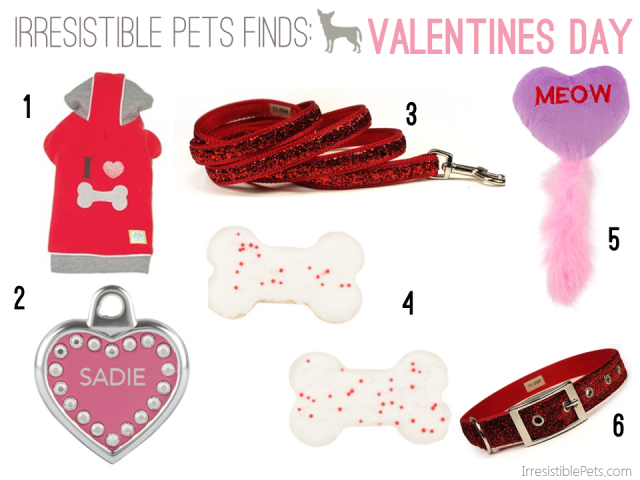 Irresistible Pets Finds - Valentines Day