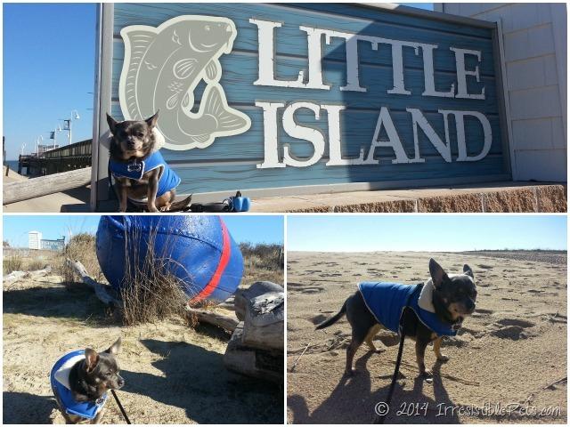 Little Island Park Sandbridge Dog Friendly